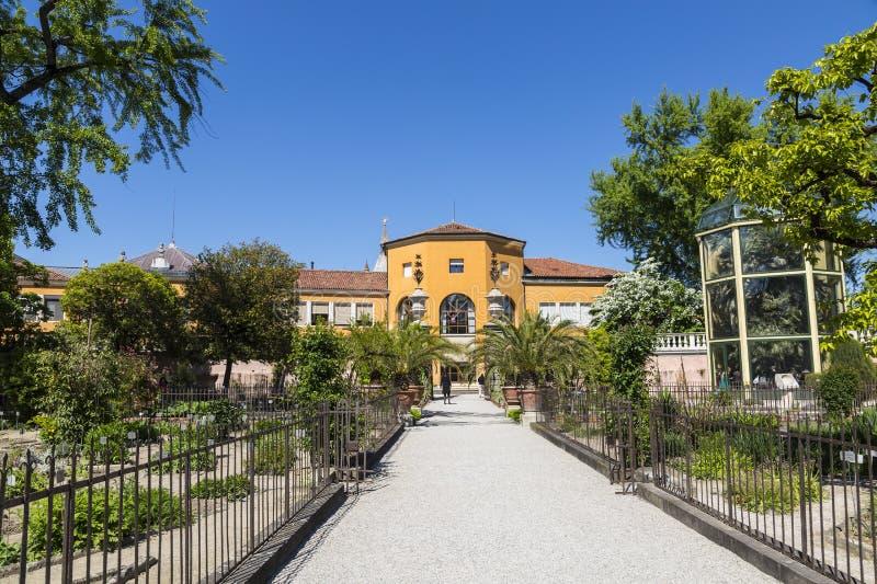 植物园在帕多瓦,最老在世界上 免版税库存照片