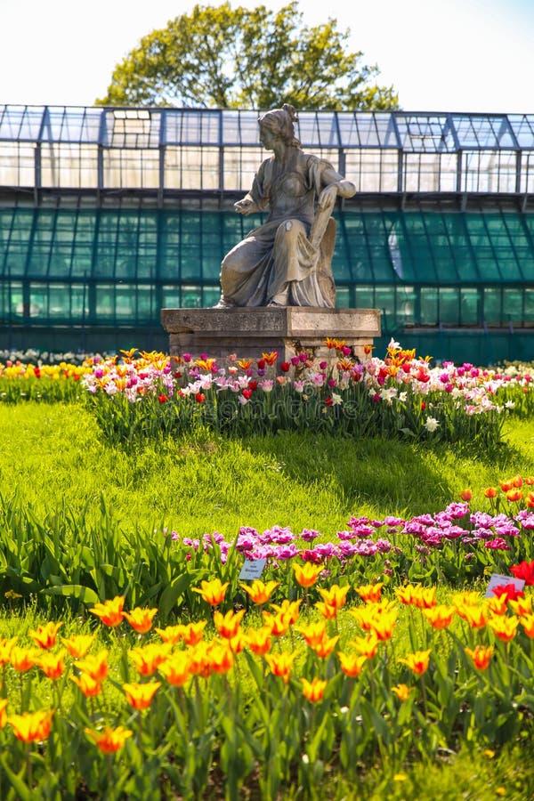 植物园在科鲁Napoca 库存图片