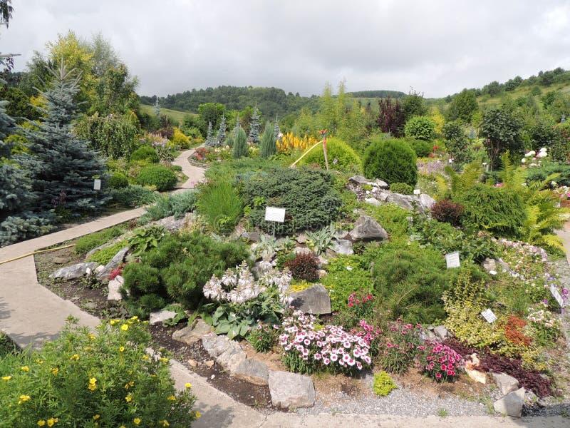 植物园许多植物边路夏天 免版税库存图片