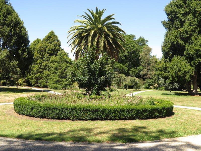 植物园风景 免版税图库摄影