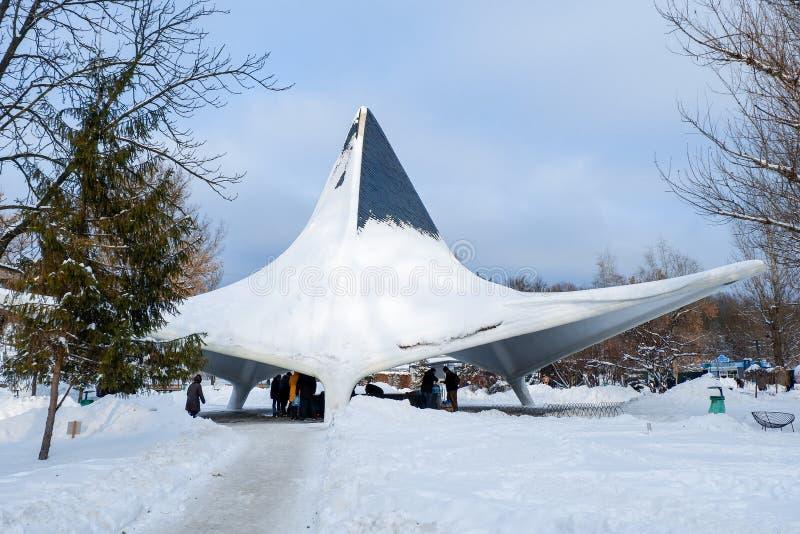 植物园Sarzhyn拜亚尔,哈尔科夫,冬天 库存图片