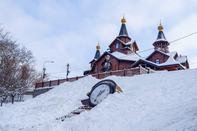 植物园Sarzhyn拜亚尔,哈尔科夫,冬天 免版税库存照片