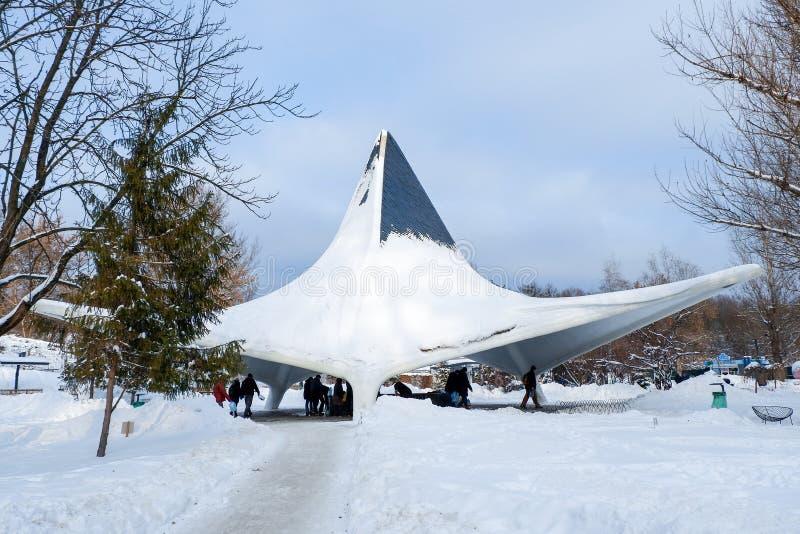 植物园Sarzhyn拜亚尔,哈尔科夫,冬天 免版税库存图片