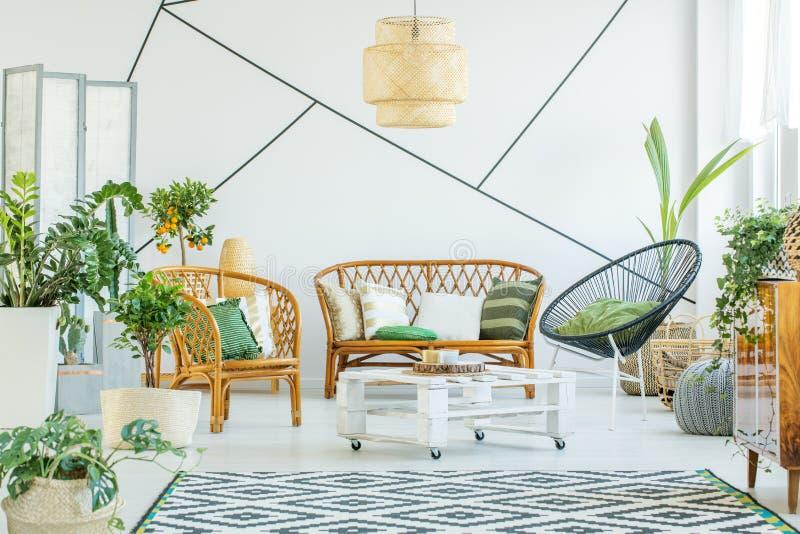 植物在现代客厅 图库摄影