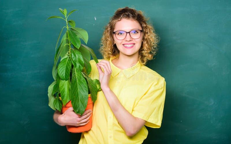 植物学和生物教训 植物的专家 植物学教育 绿叶好处 植物学和书呆子概念 妇女学校 免版税库存图片