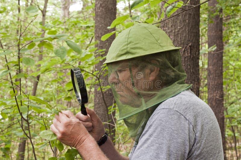 植物学家 图库摄影