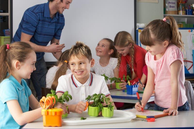 植物学课的幼儿 免版税库存图片