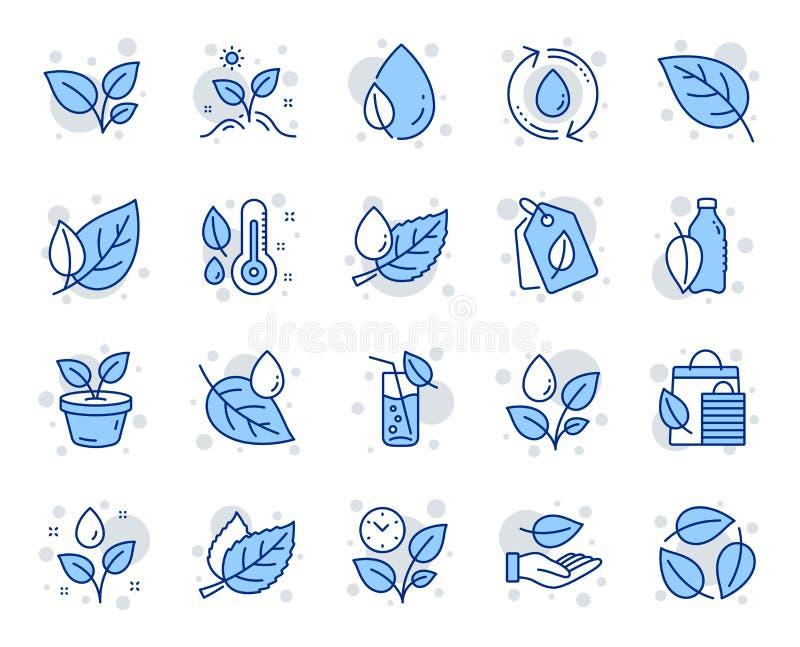 植物排行象 设置叶子、增长的植物和湿气温度计象 ?? 库存例证