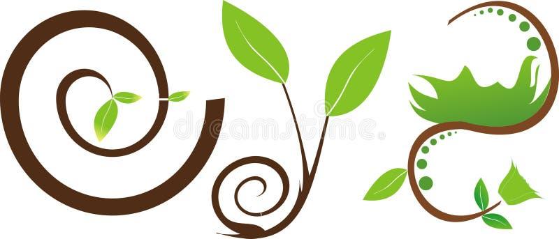 植物新鲜的绿色叶子  免版税库存照片