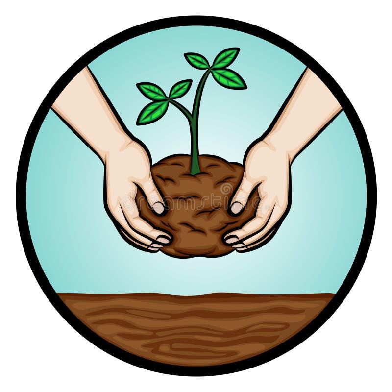 植物树 向量例证