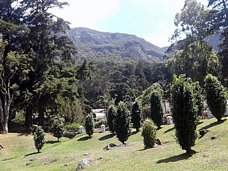 植物的公园在斯里兰卡 免版税库存照片