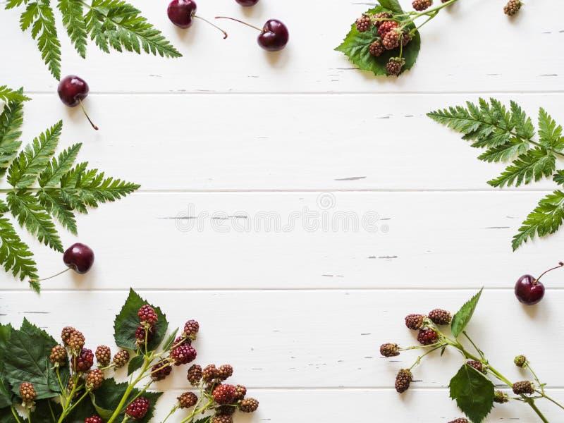 植物的框架结构的黑莓分支、蕨和新鲜的樱桃在一张土气白色木背景顶视图 r 免版税库存图片