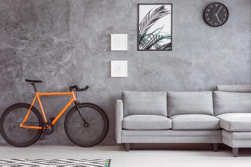 植物的海报和都市自行车 图库摄影