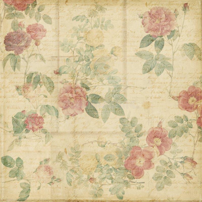 植物的葡萄酒玫瑰破旧的别致的背景 向量例证