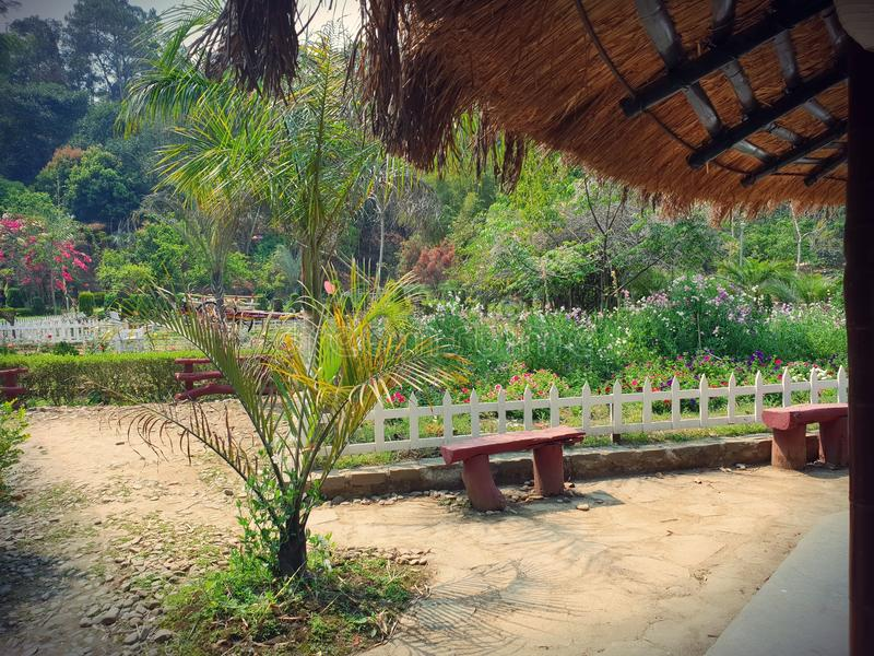 植物群和动物区系在安菲 Awangchein庭院 免版税图库摄影