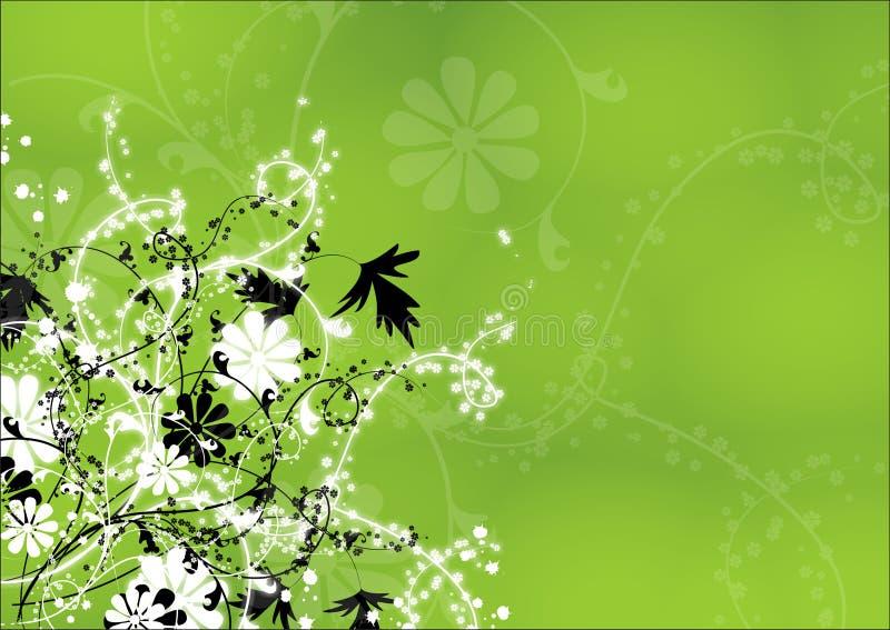 植物群 免版税库存照片