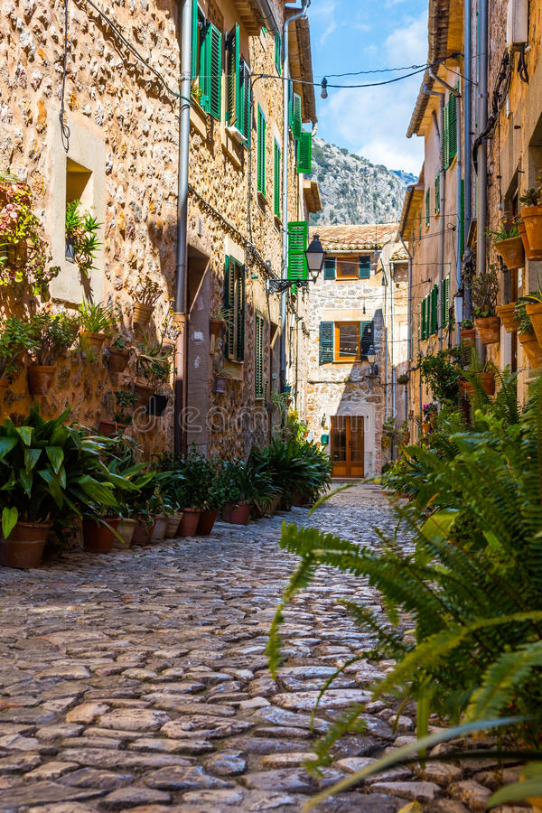 植物街道在Valldemossa,马略卡 库存照片