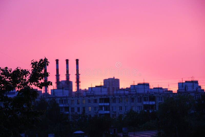 植物,在日落的城市地平线的多层的大厦、树和管子屋顶  桃红色日落在a以后的一个春天晚上 库存图片