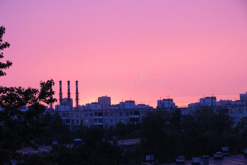 植物,在日落的城市地平线的多层的大厦、树和管子屋顶  桃红色日落 库存照片