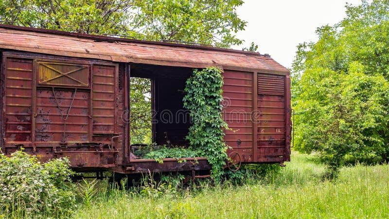 植被抓住的老铁货车流浪汉 图库摄影