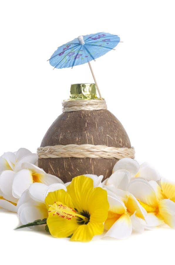 Download 椰子利口酒 库存图片. 图片 包括有 包装, 热带, 饮料, 酒客, 异乎寻常, 空白, 打赌的人, 利口酒 - 22352527