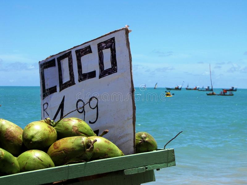 椰子在美丽的海滩的销售立场马塞约,巴西 库存照片