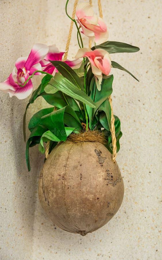椰子壳有垂悬在墙壁上的人为桃红色和红色兰花的花盆,户外,装饰,露台 库存照片