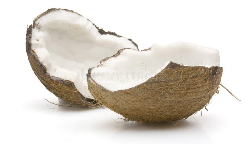椰子壳 免版税库存照片