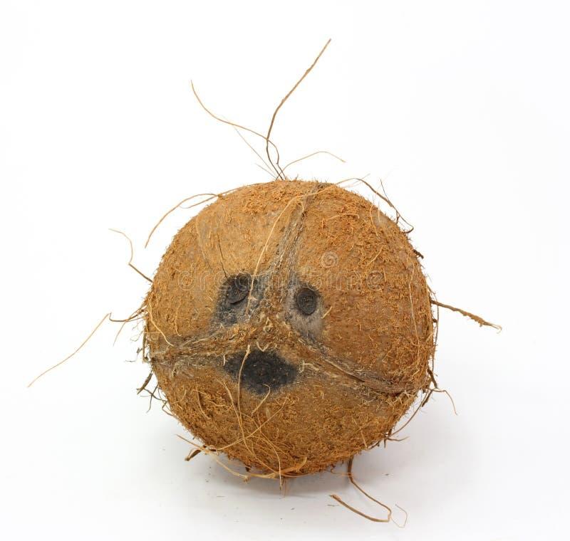 椰子微笑的白色 库存照片