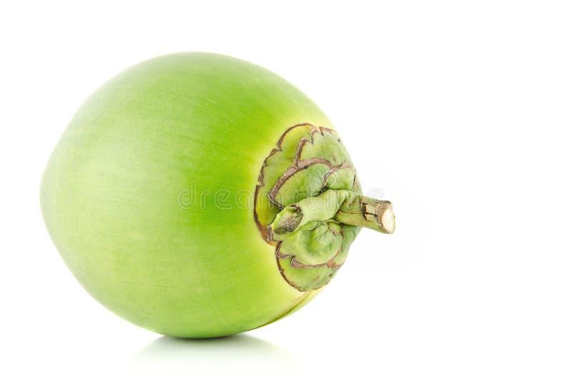 椰子果子绿色 免版税库存图片