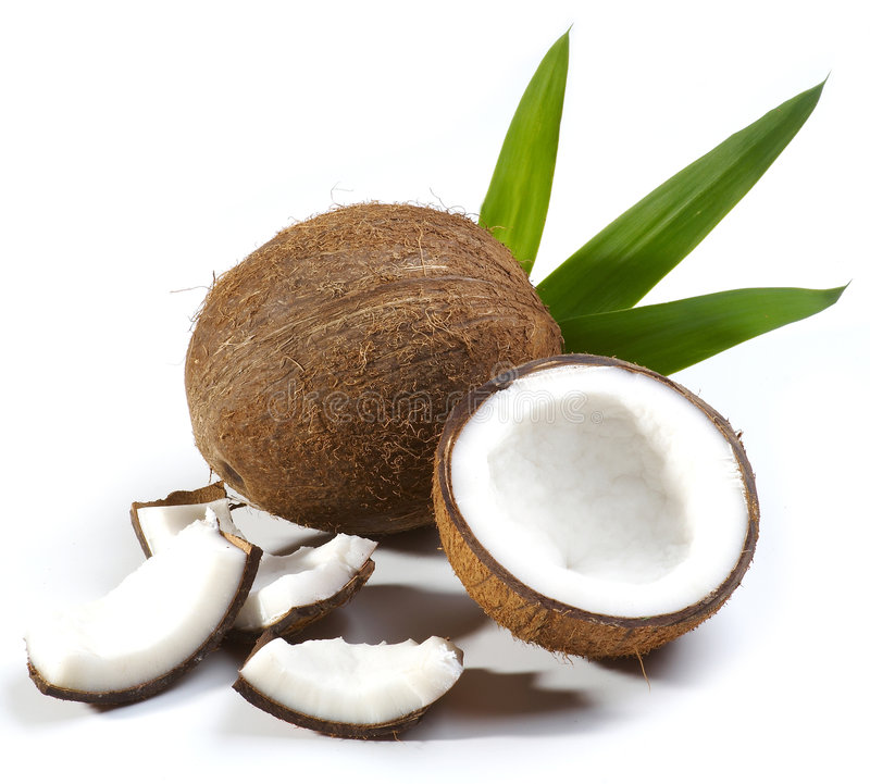 椰子果子 库存图片