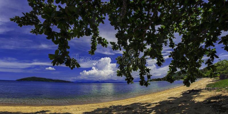椰子棕榈滩在泰国 免版税库存图片