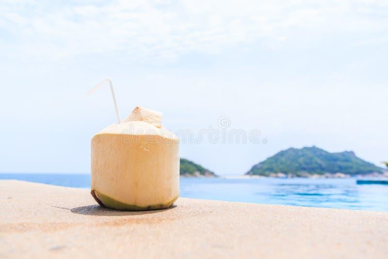 椰子汁 库存照片