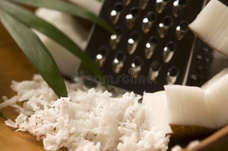 椰子磨碎了磨丝器螺母 免版税图库摄影