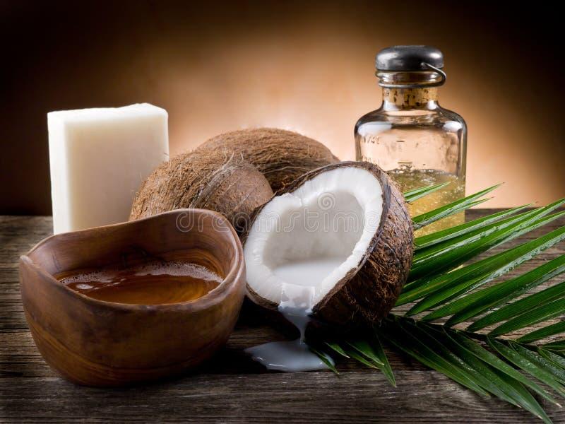 椰子自然油核桃 库存图片