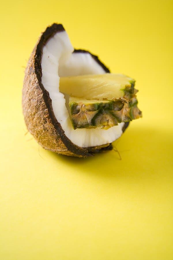椰子菠萝 库存照片