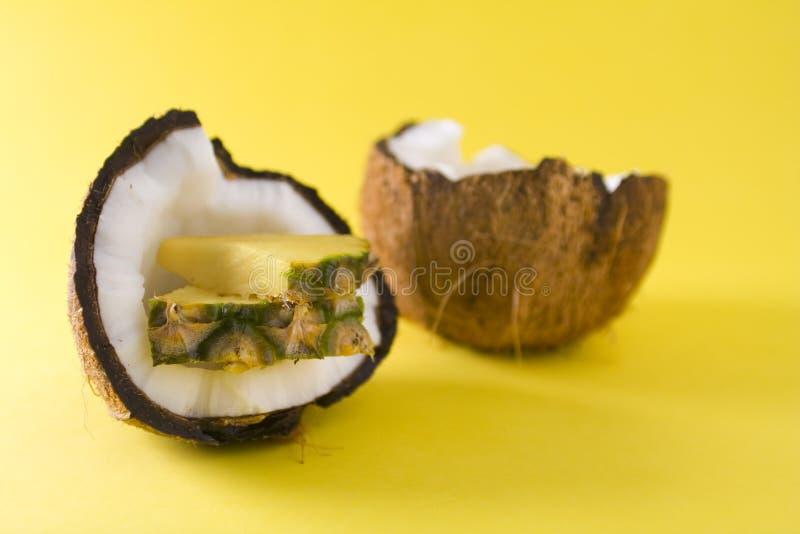 椰子菠萝 免版税图库摄影