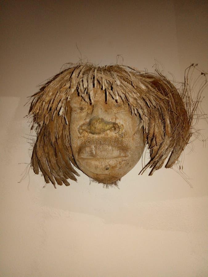 椰子面孔 图库摄影