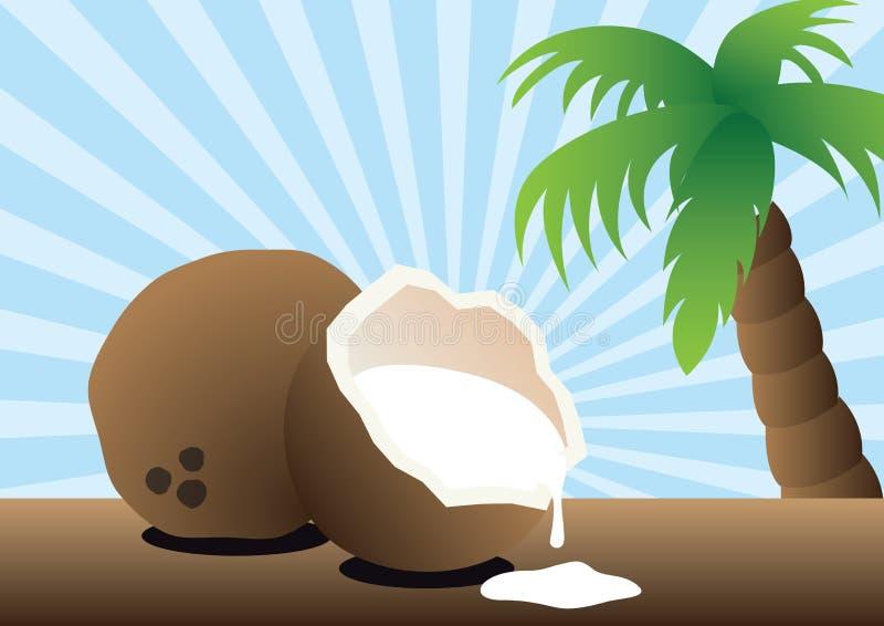 椰子饮料 向量例证