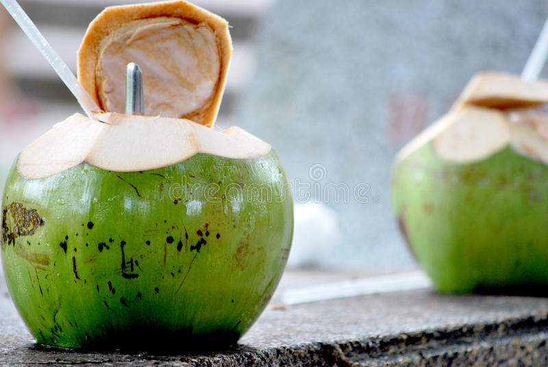 年轻椰子饮料 库存照片