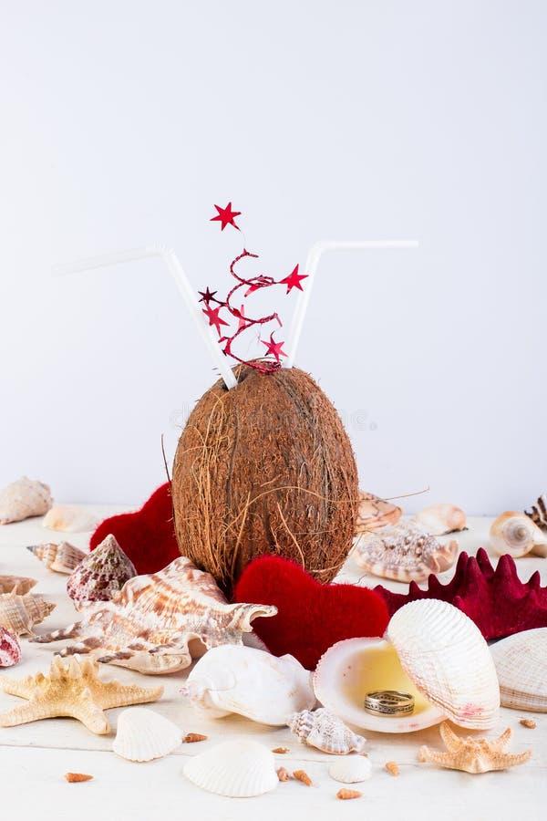 椰子鸡尾酒 夫妇日例证爱恋的华伦泰向量 库存图片