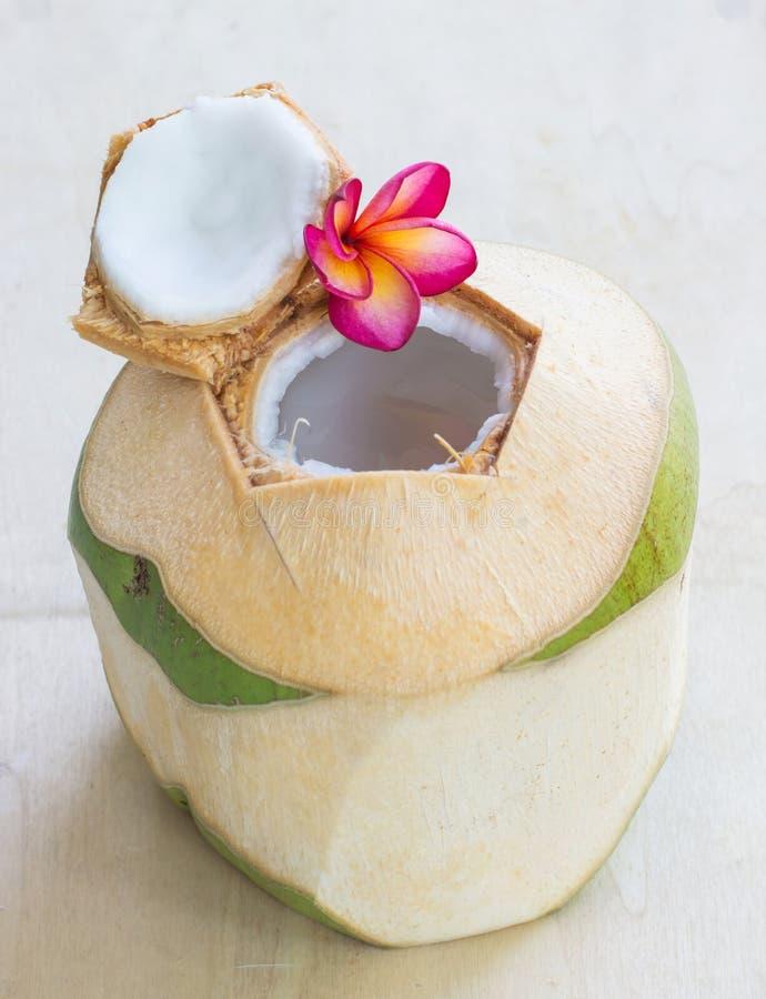 椰子水饮料 库存图片