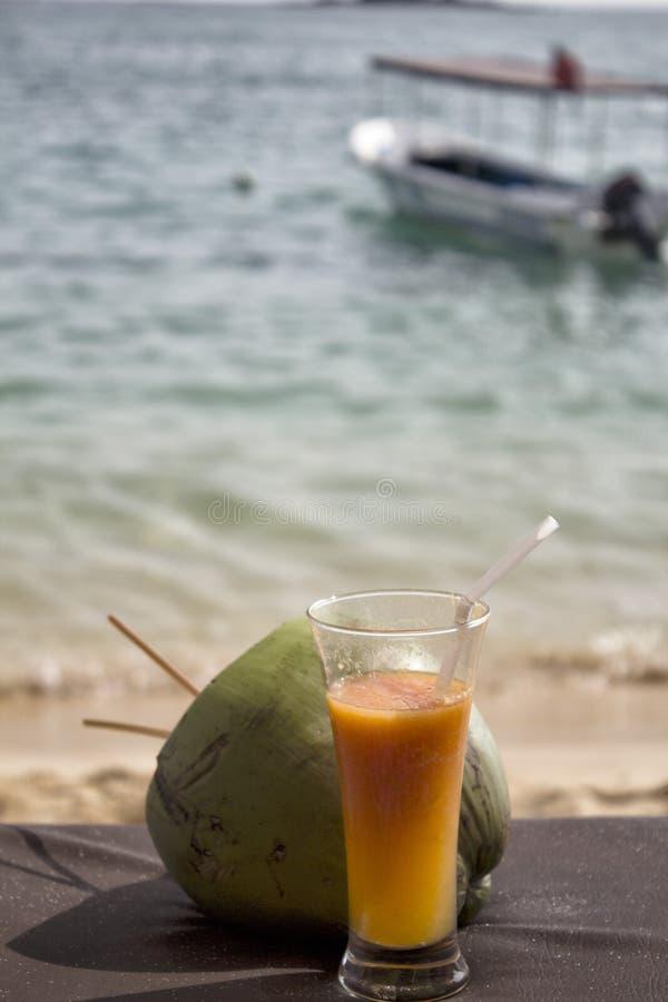Download 椰子 库存照片. 图片 包括有 照亮, 鸡尾酒, 绿色, 小船, 展望期, 小珠靠岸的, 新鲜, beautifuler - 30335664