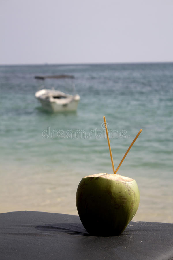 Download 椰子 库存照片. 图片 包括有 小珠靠岸的, 鸡尾酒, 饮料, 冷静, 椰子, 展望期, 装饰, 新鲜, 烤肉 - 30335810