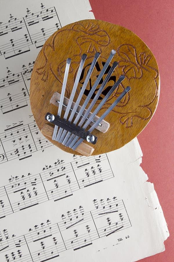 椰子Kalimba拇指钢琴 库存图片