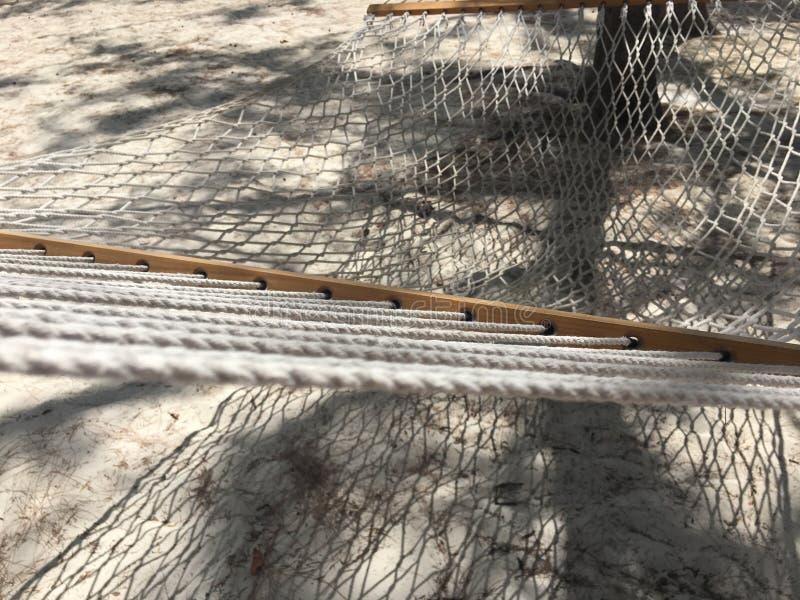 椰树凯海滩 免版税库存图片