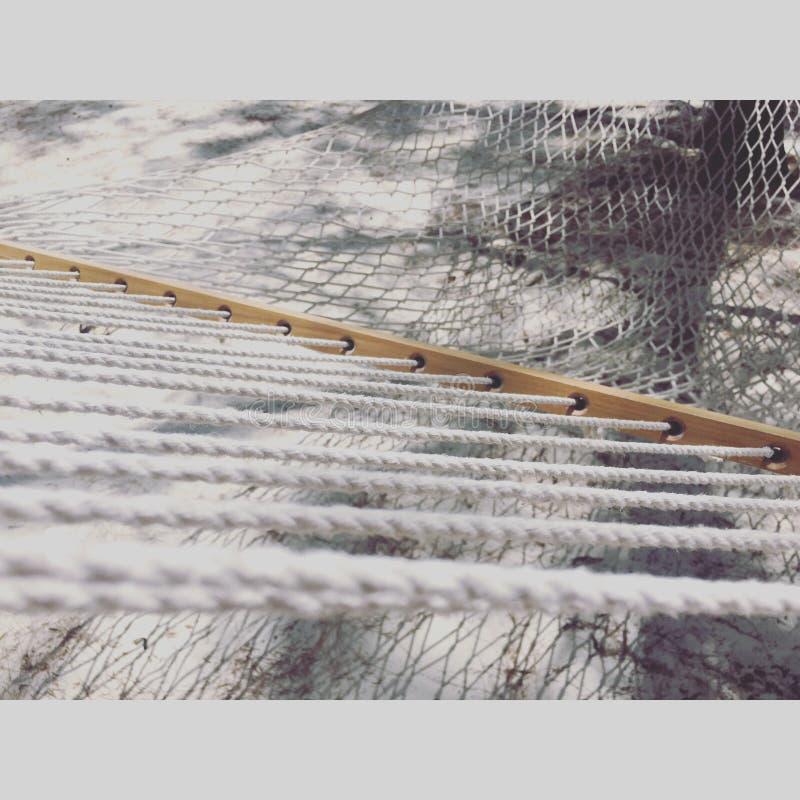 椰树凯hamac海岛 免版税库存图片