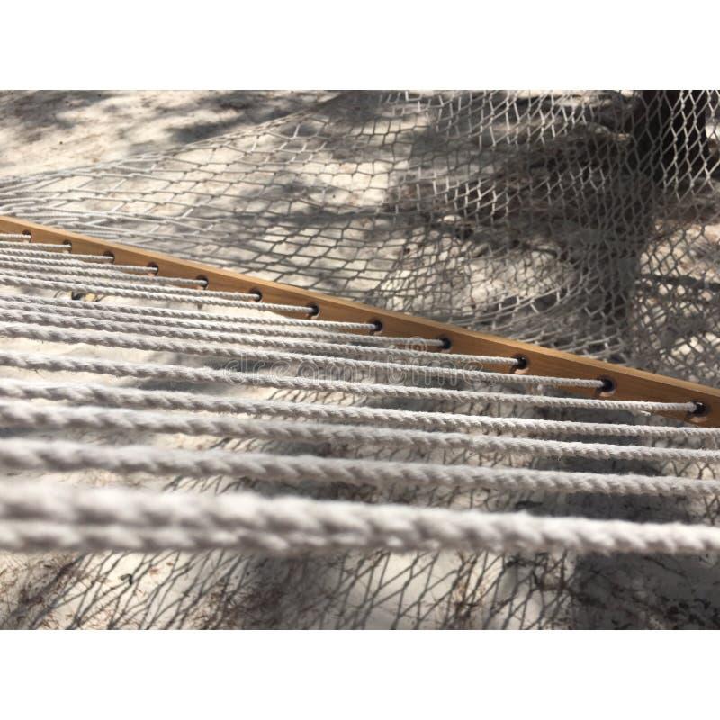 椰树凯hamac 图库摄影