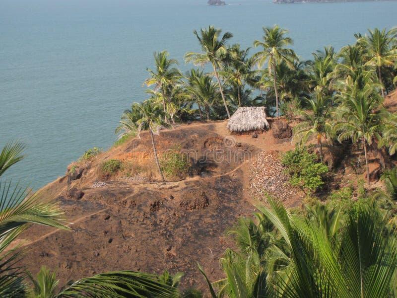 椰树小屋 库存图片
