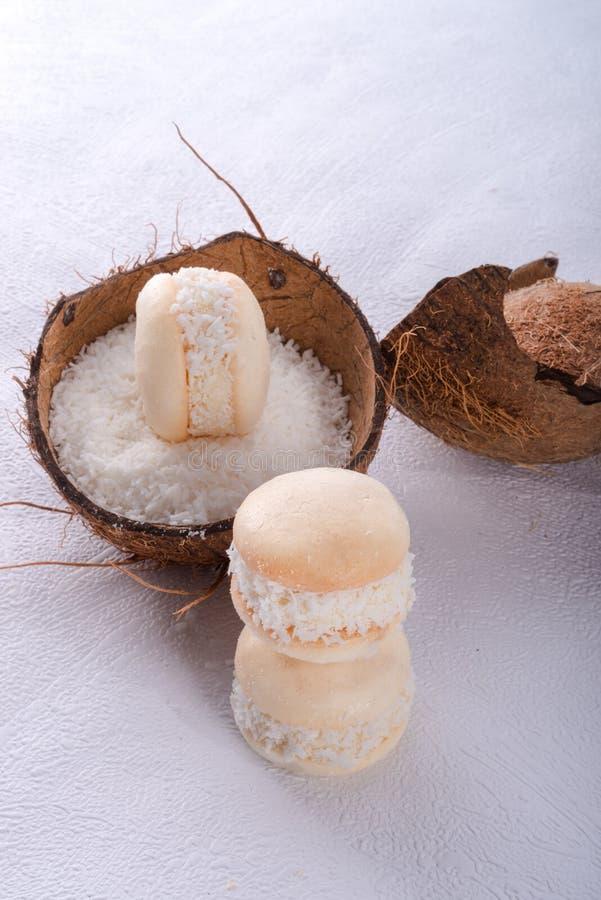 椰树macaron 库存图片